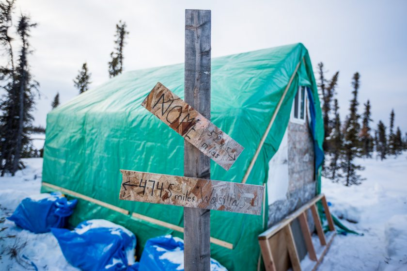 2014 Iditarod Cripple 14